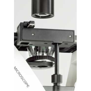 Microscopio inverso KERN OCM 161